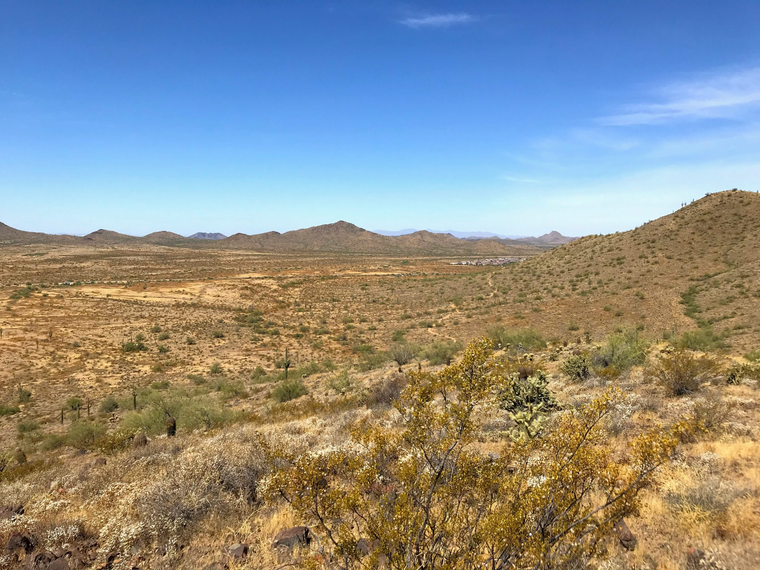 Sidewinder trail hike Phoenix Sonoran Preserve views southeast