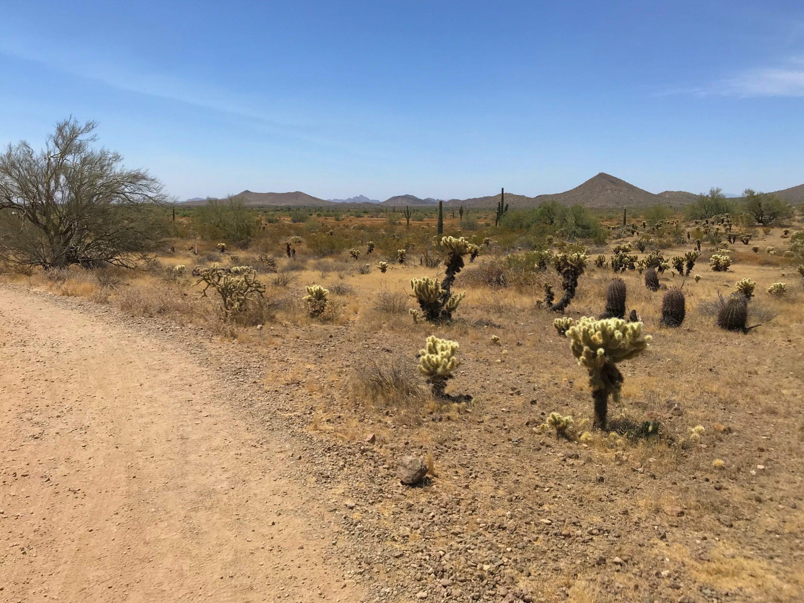 Sidewinder trail hike Phoenix Sonoran Preserve views south