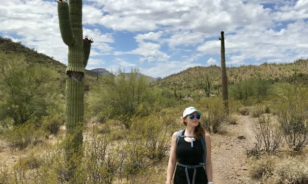 Walkin' Jim Trail Hike Peoria, AZ