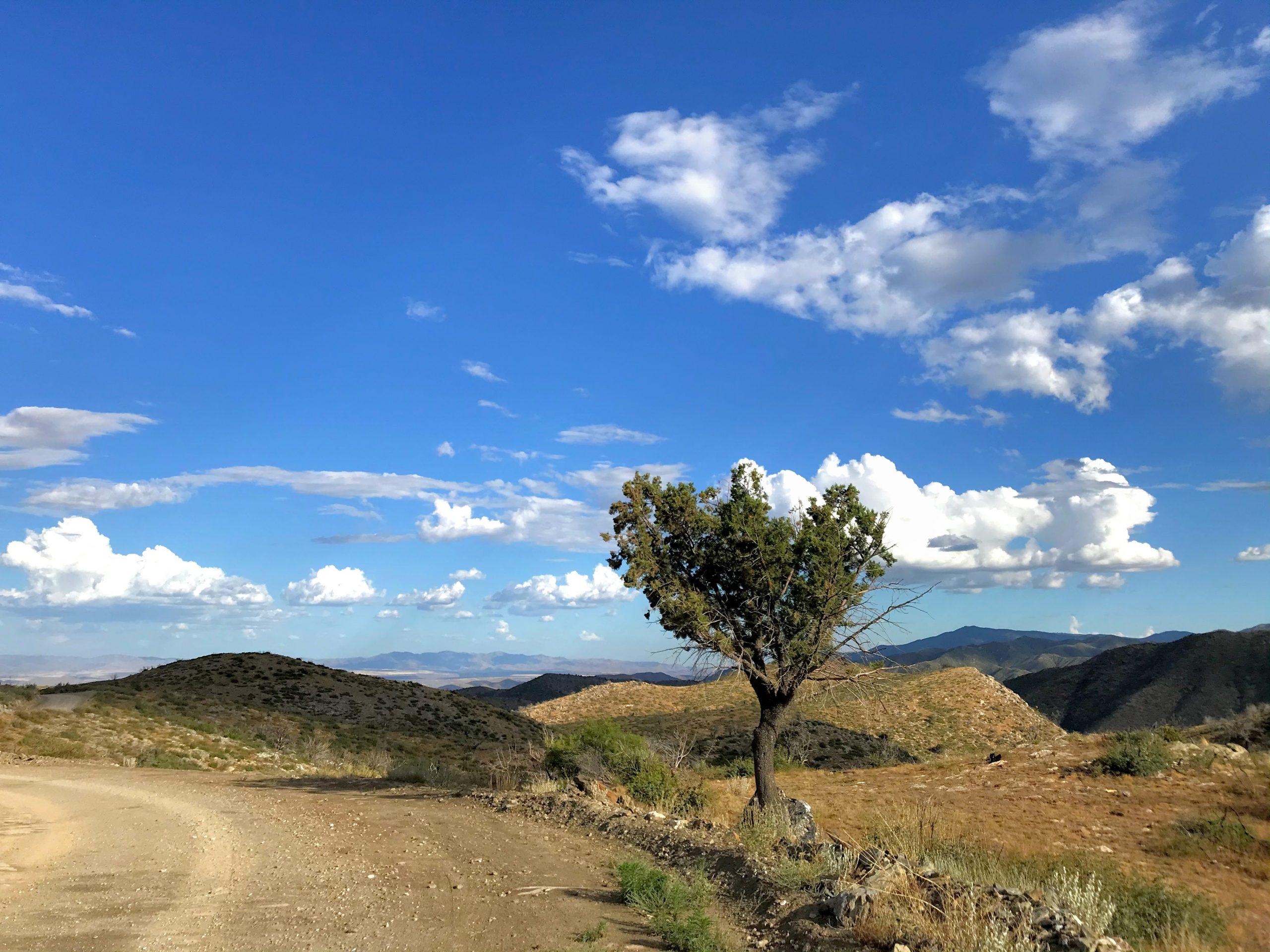 Crown King Road Senator HIghway Off Road Drive desert views FR67