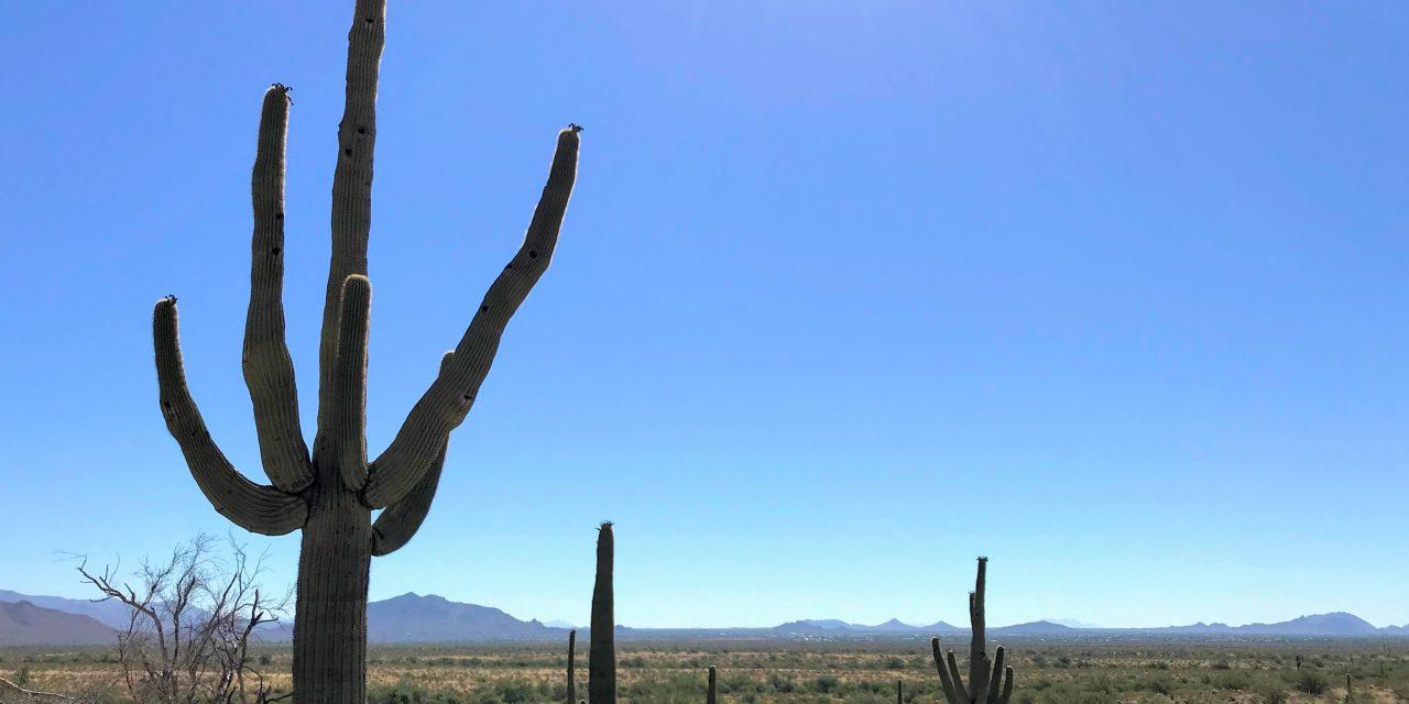 Ridgeline Trail Hike, Phoenix Sonoran Preserve