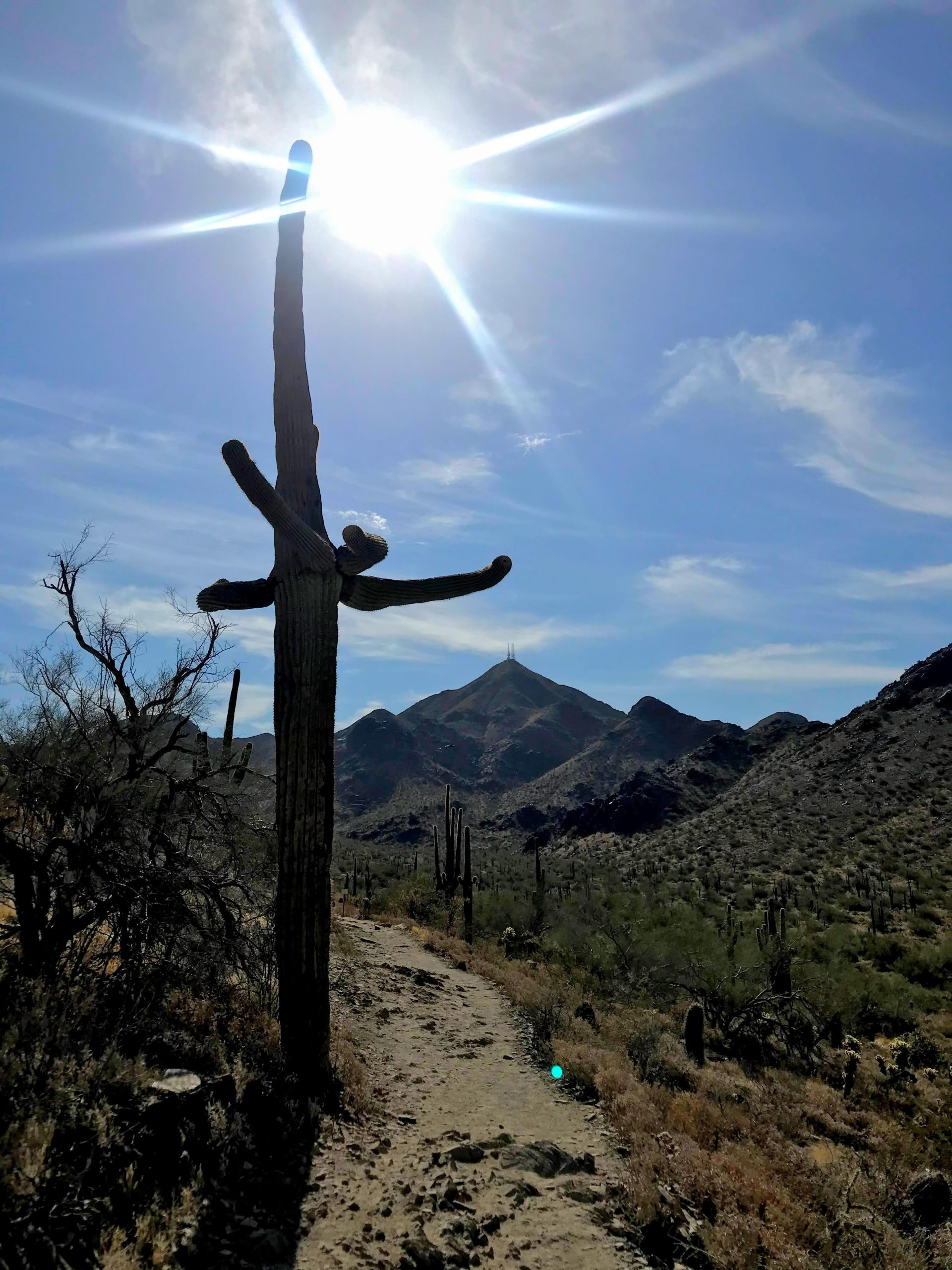 Levee Trail Hike Mcdowell Sonoran Preserve Thompson peak 2