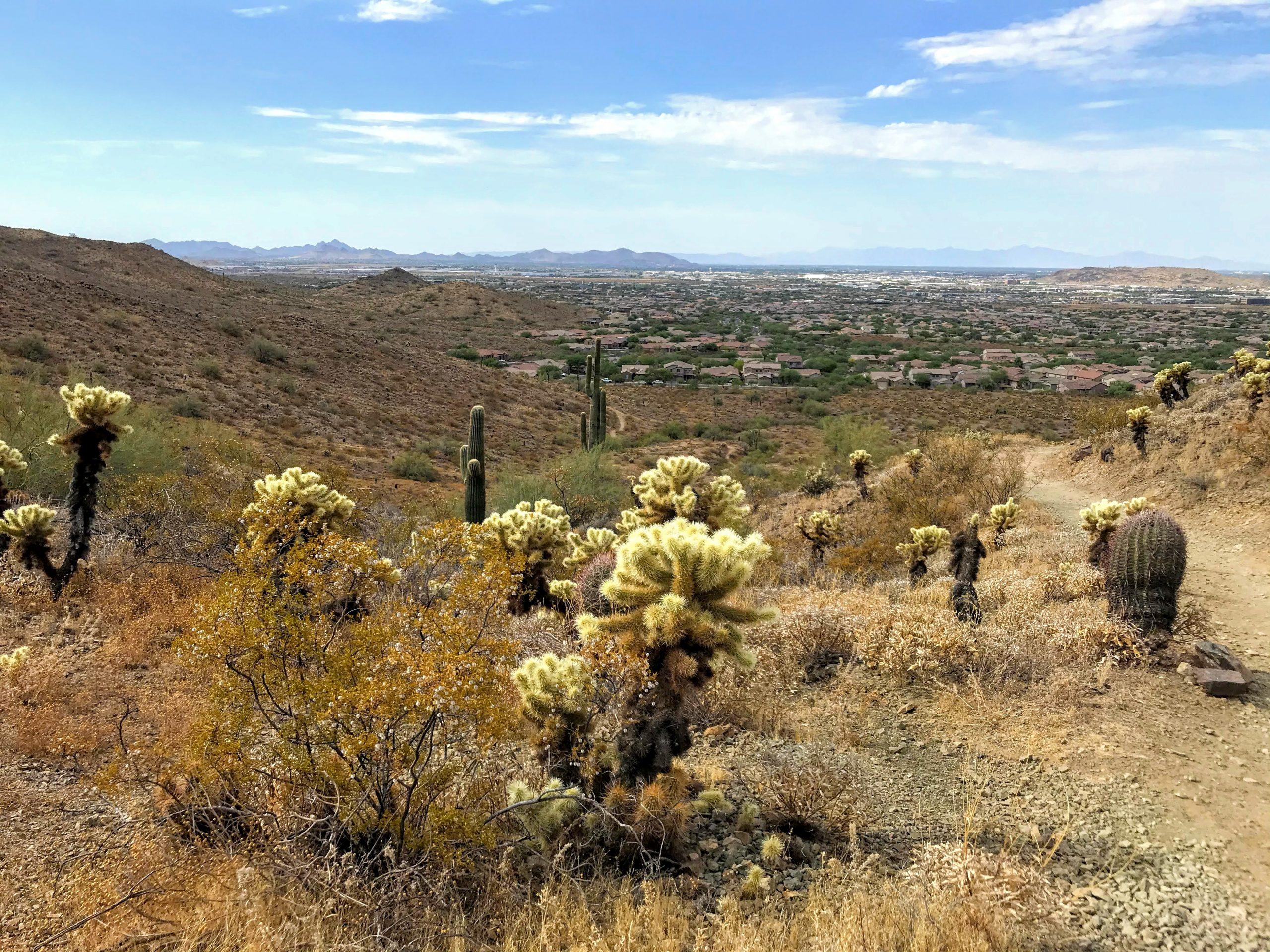 Desert Vista Trailhead Hikes, Phoenix Sonoran Preserve downtown views