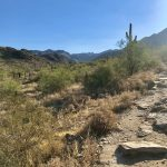 Inspiration Point Hike, McDowell Sonoran Preserve