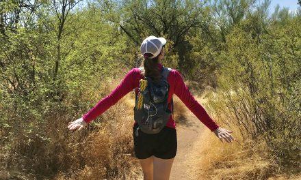 Apache Wash Loop Hike, Phoenix Sonoran Preserve