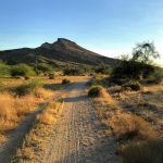 Hiking to Brown's Ranch, McDowell Sonoran Preserve