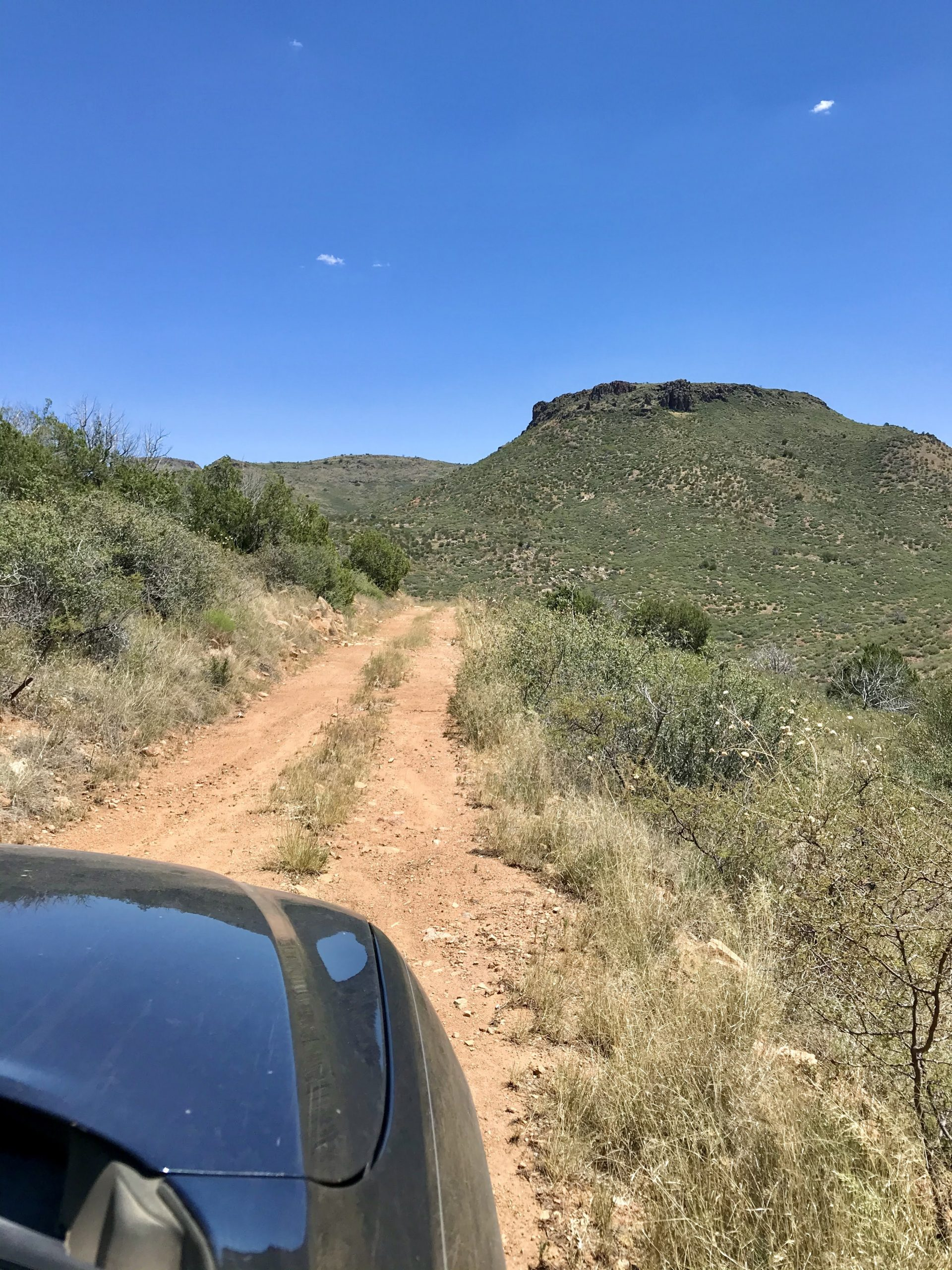 Forest Road 44 Off-Road Drive the road