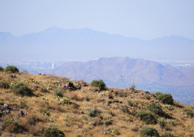 Hike to the Lookout: Downtown Phoenix from the Lookout