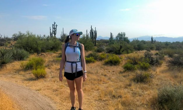136th St Express Trail Hike, McDowell Sonoran Preserve