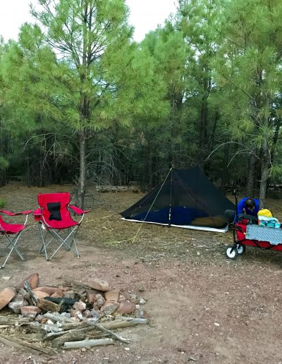 Dispersed Camping Fire Control Road (NF-64) Payson AZ pine campsite