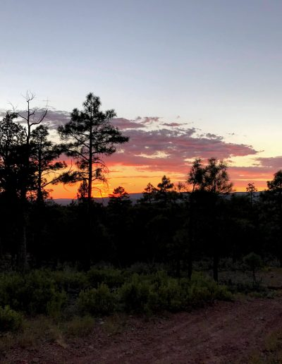 Dispersed Camping Fire Control Road (NF-64) Payson AZ Sunset