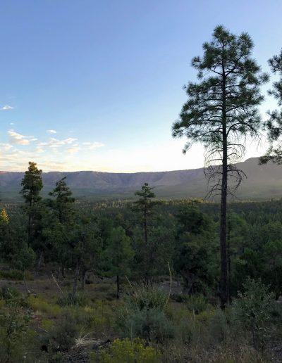 Dispersed Camping Fire Control Road (NF-64) Payson AZ Mogollon Rim 2